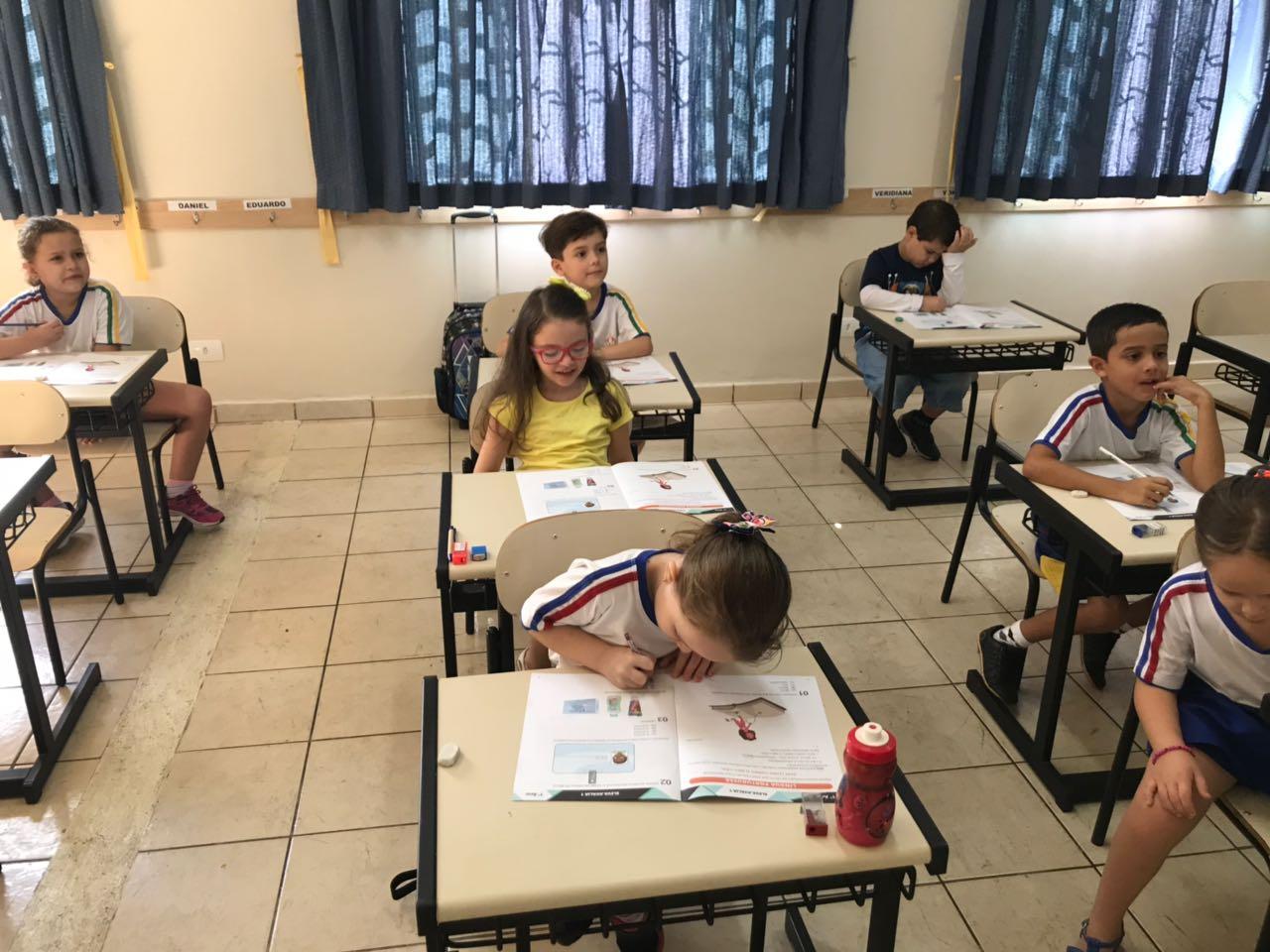 Eleva (8)