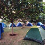 Camp Kids (25)